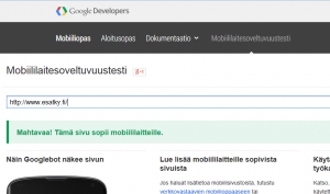 google-testi-esatky